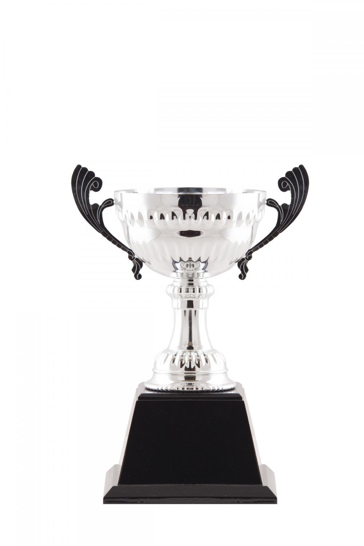 ถ้วยรางวัลโลหะ MT-T13-1a